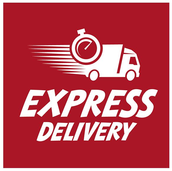 Entre express doors logo
